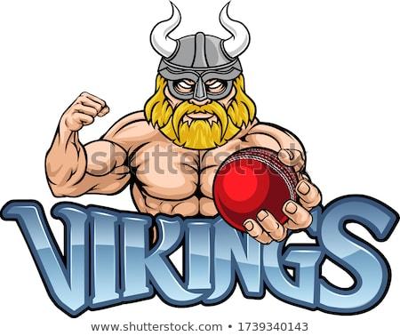 viking cricket sports mascot stock photo © krisdog