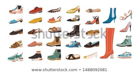 Ingesteld elegante vrouwen schoenen kleurrijk Stockfoto © MarySan