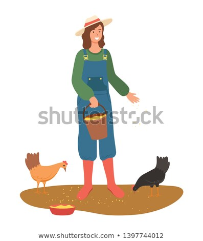 Agricultural Worker Sprinkling Corn Hens Vector Stock photo © robuart