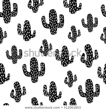 кактус · мексиканских · искусства · завода · украшение · набор - Сток-фото © lemony
