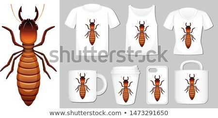Graphic of termite on different product templates Stock photo © bluering