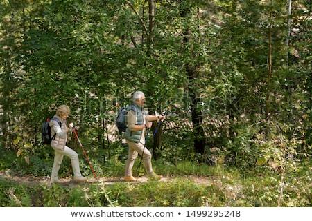 Idős pár sétál lefelé erdő út trekking Stock fotó © pressmaster
