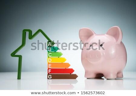 Ház energiahatékonyság grafikon rózsaszín persely üvegház Stock fotó © AndreyPopov