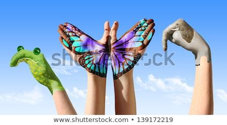 hand · dier · vrouwelijke · vinger · aap - stockfoto © iko