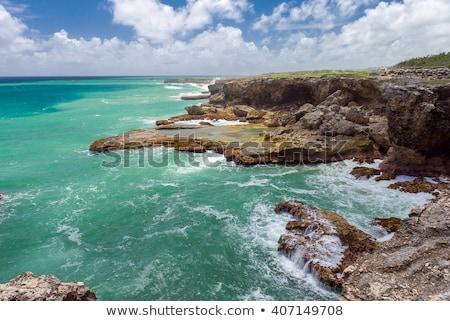 Noorden punt Barbados caribbean landschap zee Stockfoto © phbcz