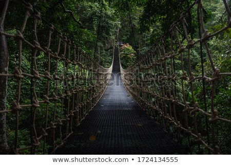 Rope walkway  Stock photo © Witthaya