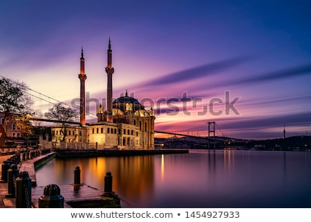 istanbul · silhouet · gebouw · stad · brug · kasteel - stockfoto © cidepix