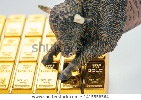 Recession of the price for gold Stock photo © AnatolyM