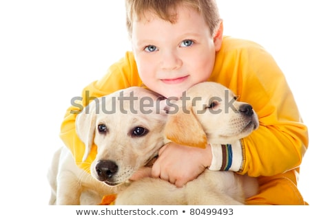 handsome young boy playing with his dog against white background stock photo © hasloo