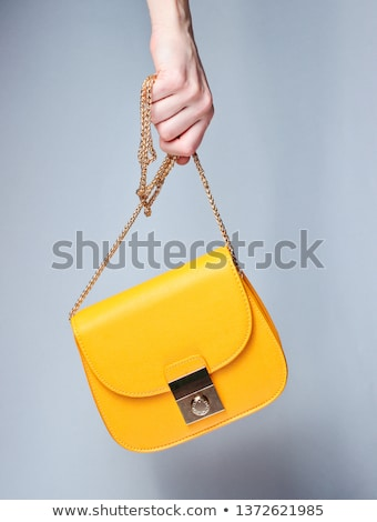 Gris femenino embrague cadena aislado blanco Foto stock © RuslanOmega