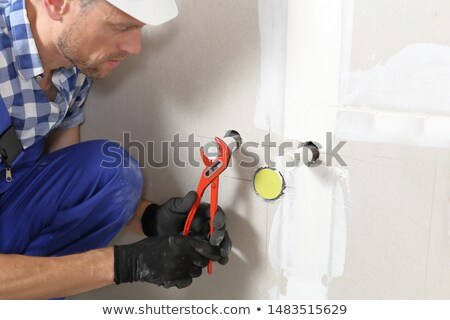 Friendly Plumber Complete stock photo © lisafx