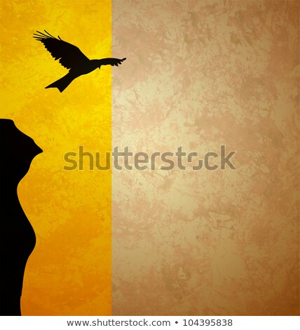 flying bird black sunrise sillhouette grunge orange illustration Stock photo © cherju