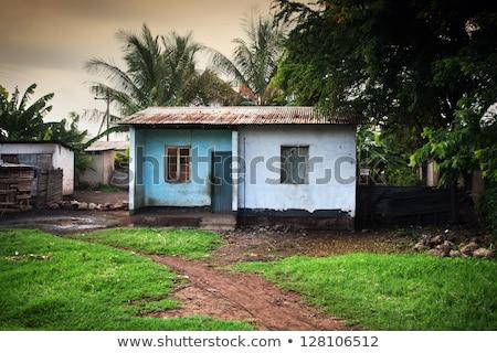 Zuidelijk Kenia armoede landschap klein huizen Stockfoto © photocreo