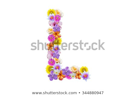 Plumeria alphabet isolated Stock photo © Witthaya