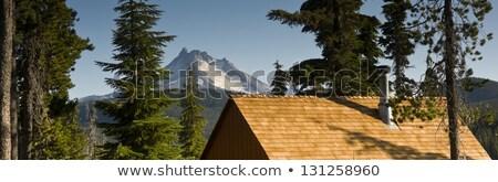 panoramic view cabins around olallie lake near mount jefferson stock photo © cboswell