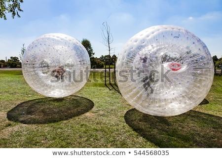 children have fun in the Zorbing Ball  Stock photo © meinzahn