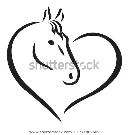 Horse head vector animal illustration for t-shirt. Sketch tattoo design. Stock photo © Hermione