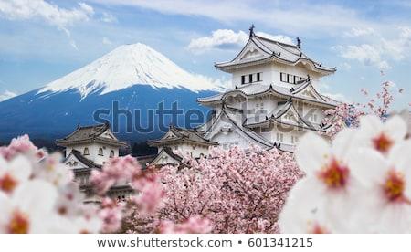 Japonya kelime bulutu telefon sanayi bilim ada Stok fotoğraf © Refugeek