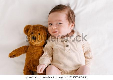 Stock foto: Nest · Teddybär · blau · Blumen · glücklich · home