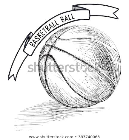 sketch basketball ball vector vintage background stock photo © kali