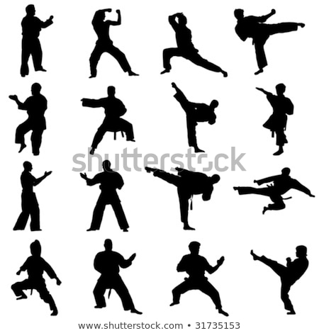 arts · martiaux · silhouettes · sport · art · pied · poing - photo stock © Slobelix