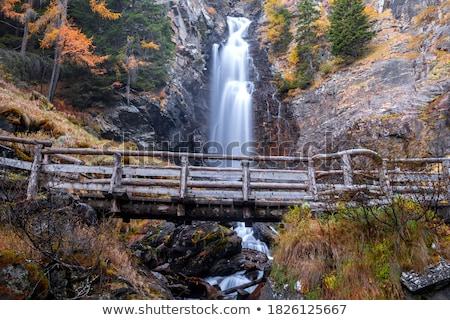 Trentino - waterfall in Val di Sole Stock photo © Antonio-S