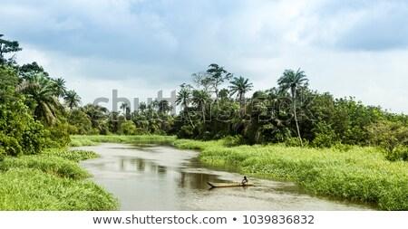 Ivory Coast of Africa Stock photo © PixelsAway