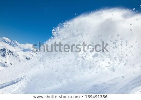 Skier in powder snow Stock photo © franky242