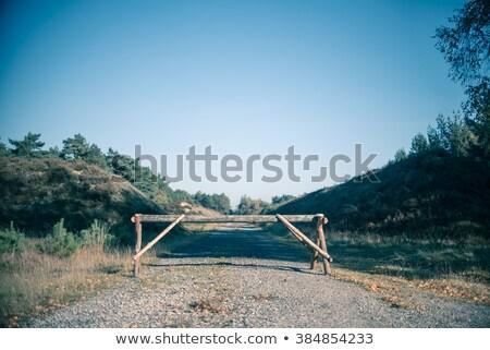 Dode einde weg gesloten bos Stockfoto © PixelsAway