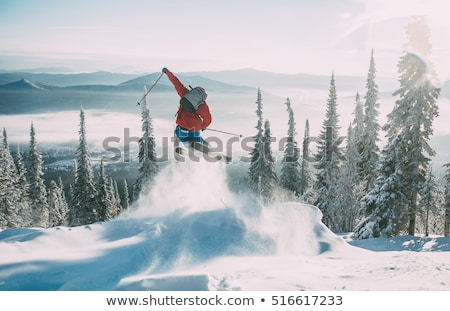 Jumping freestyle skier Stock photo © smuki