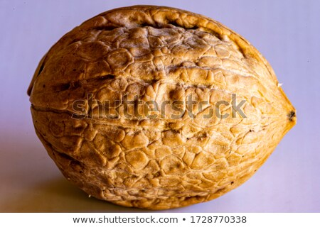 cracked and closed pecans walnuts halzelnuts and peanuts stock photo © rob_stark