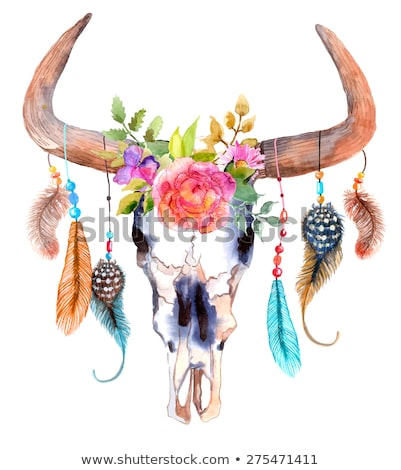 Watercolor bull skull with flowers and feathers Stock photo © Elmiko