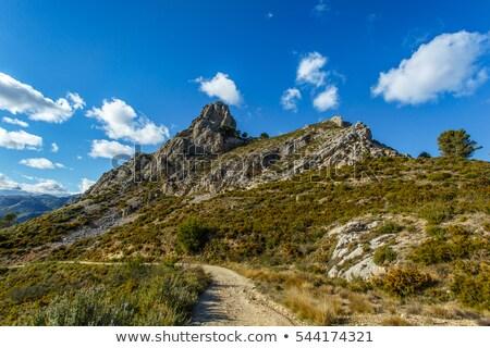 schilderachtig · landschap · berg · top · bergen · panorama - stockfoto © amok
