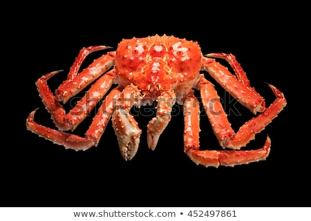 Large red king kamchatsky crab isolated on black background Stock photo © nasonov