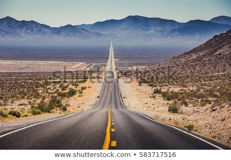 Highway in desert Stock photo © Givaga