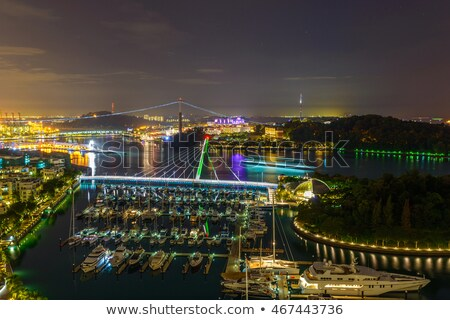Brug nacht Singapore gebouw bouw Blauw Stockfoto © dutourdumonde
