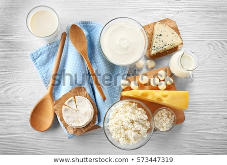 Different types of dairy products Stock photo © bluering