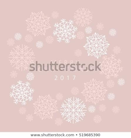 snowflake winter card of header in gentle feminine style vector stock photo © galyna