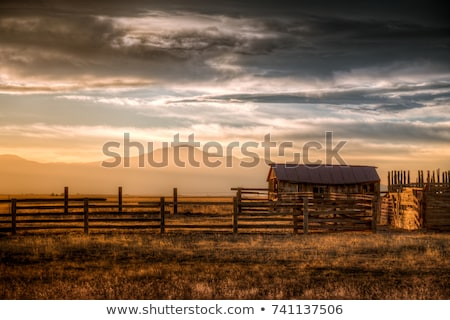 Farm scene with red barn and wooden windmill Stock photo © bluering