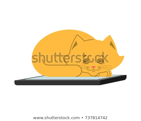 Cat and keyboard. Home pet and computer. Does not work. Vector i Stock photo © popaukropa