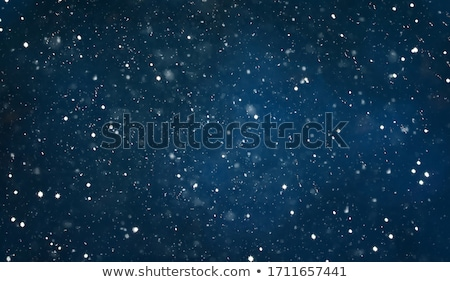 winter night landscape with falling snow and colroful light for  Stock photo © SArts