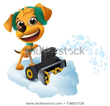 Sneeuw verwijdering Geel hond machine geïsoleerd Stockfoto © orensila