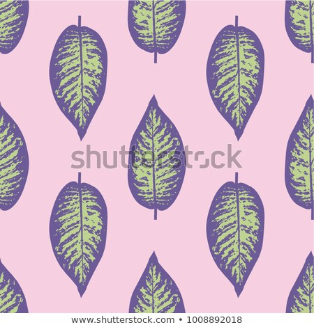 Dieffenbachia ultra violet tropical leaf seamless pattern. Vector illustration Stock photo © gladiolus