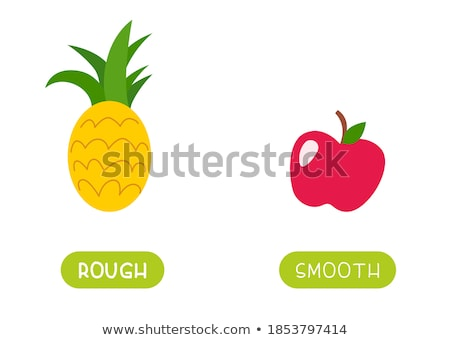 Opposite words for smooth and rough Stock photo © bluering