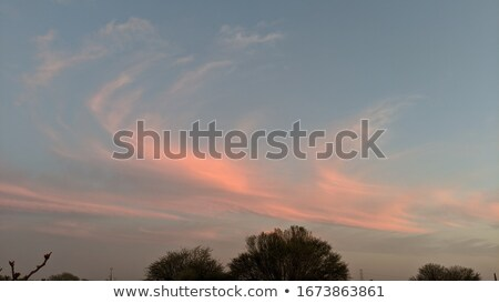 Beautiful  sea  on  the sun lite Stock photo © papa1266