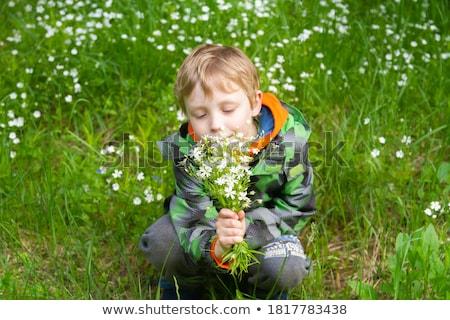 Menino mãe flores da primavera gramado mulher árvore Foto stock © Pozn