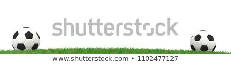 Twee voetbal gras panorama 3D Stockfoto © andreasberheide