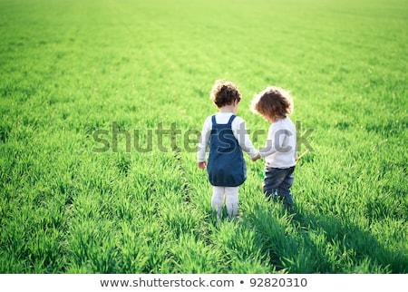 Stok fotoğraf: Children Going On Summer Field