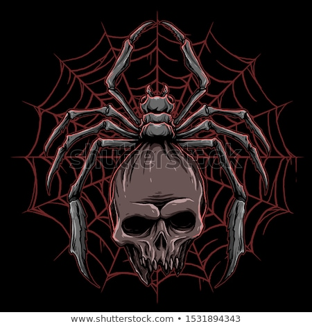 Skull Spider Stock photo © fizzgig