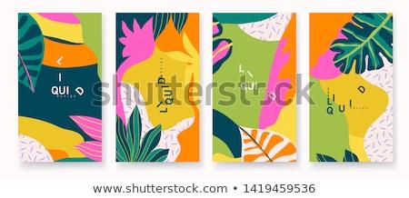 Verão venda projeto flor exótico folhas Foto stock © articular